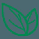 SES companies Services | Environmental